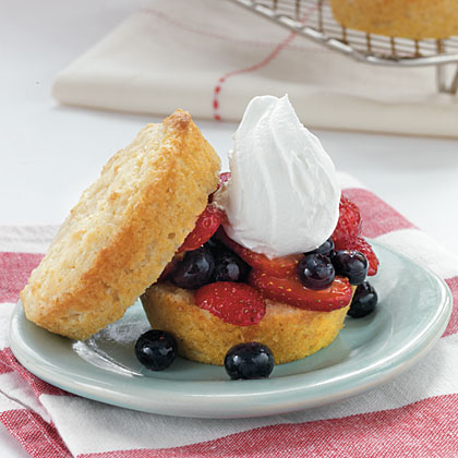 vanilla-sponge-cakes-berry-filling-oh-x.jpg