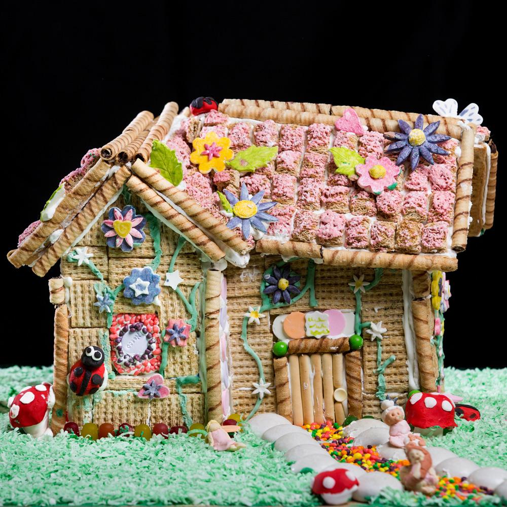 11-17-14_myrecipes_gingerbread0393.jpg