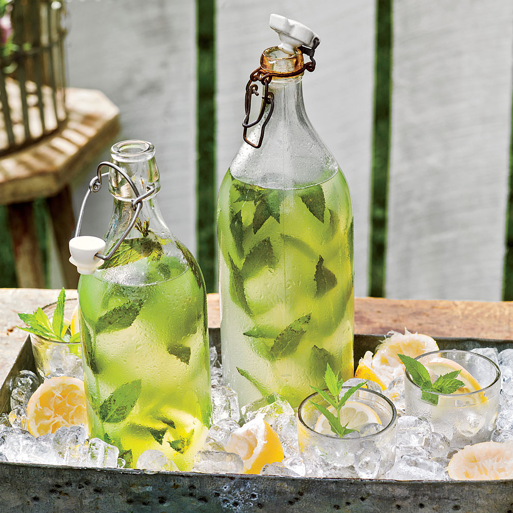 Minty Lemonade Recipe