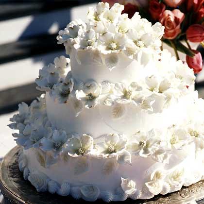 dogwoodblossom-cake-sl-1816388-xl-1.jpg