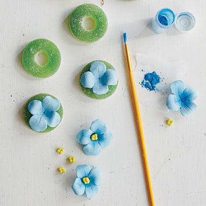 hydrangea-blossoms-sl-x-1.jpg