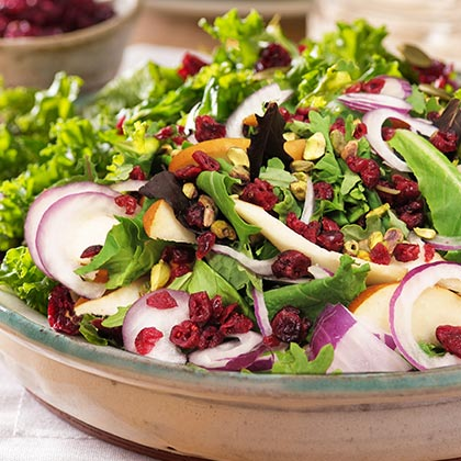 Holiday Kale Salad with Cranberries