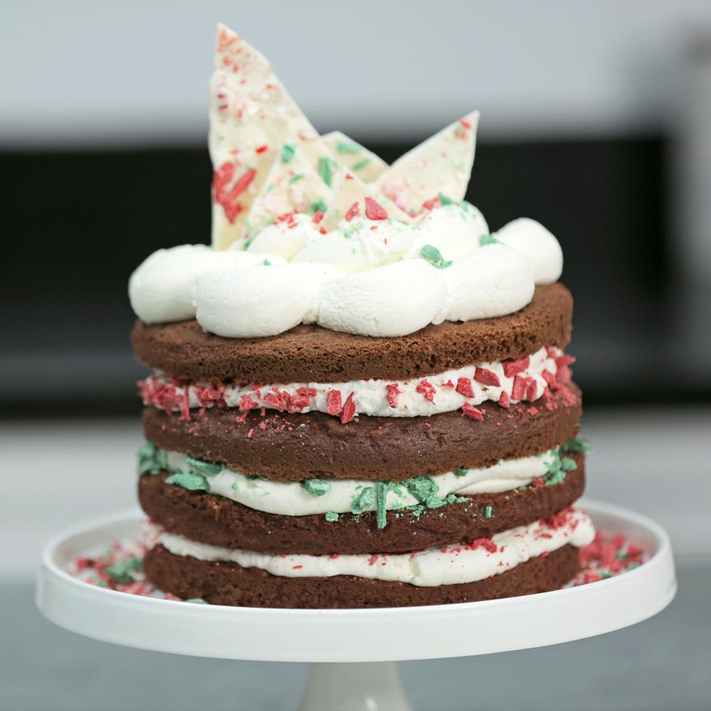 Christmas cake ideas recipes myrecipes easy chocolate christmas cake solutioingenieria Images