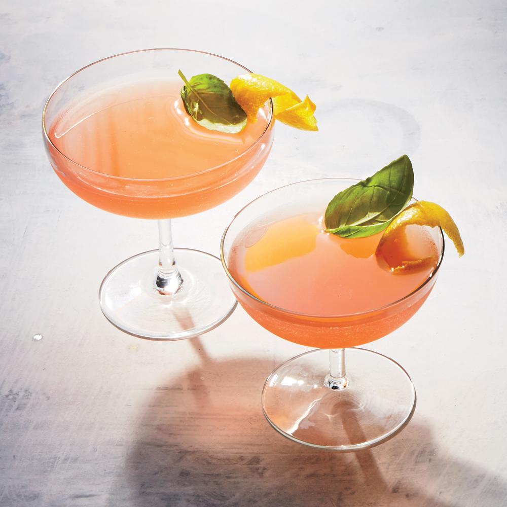 Rhubarb-Basil Shrub Cocktails