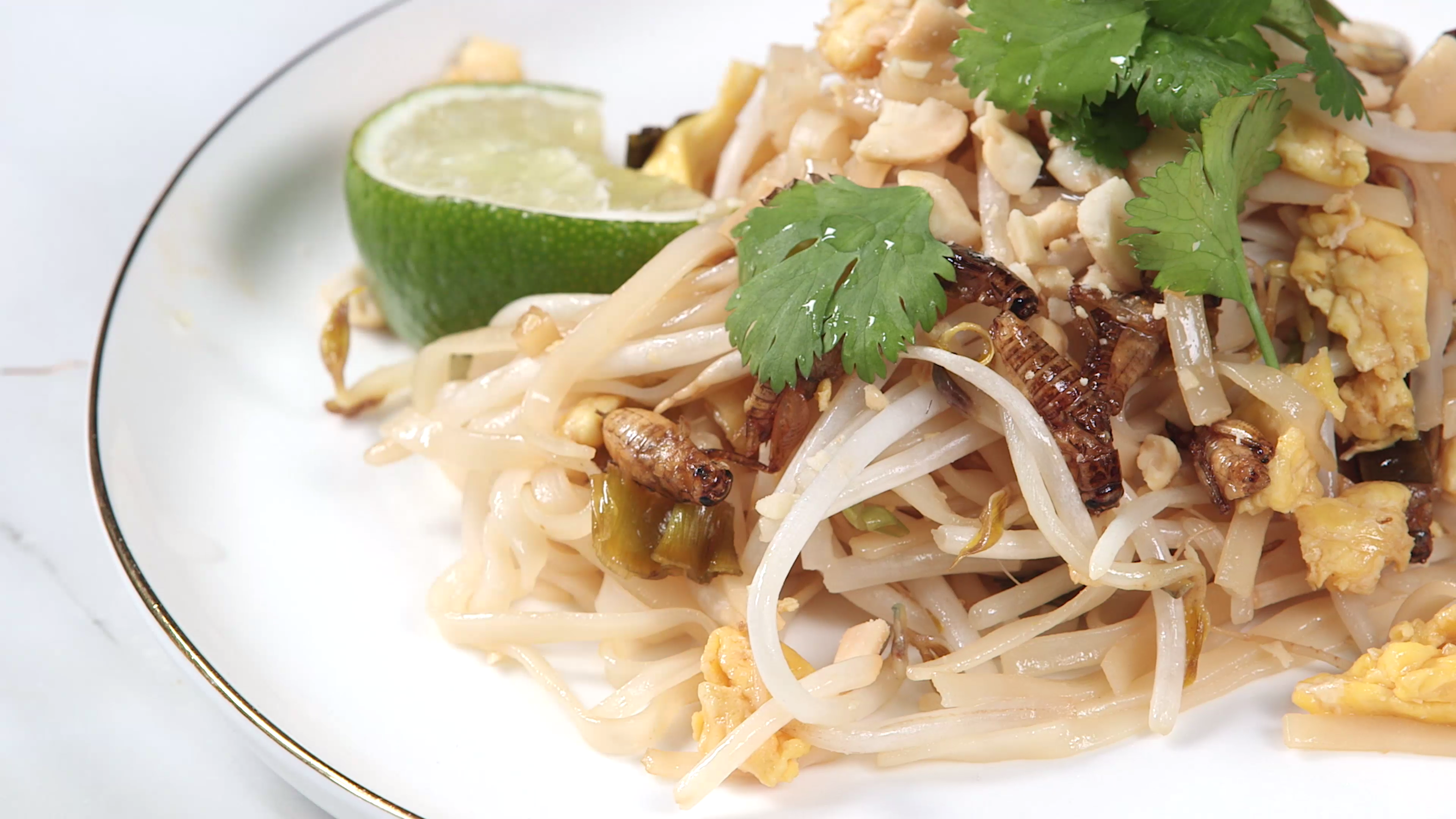 Cricket Pad Thai Recipe | MyRecipes