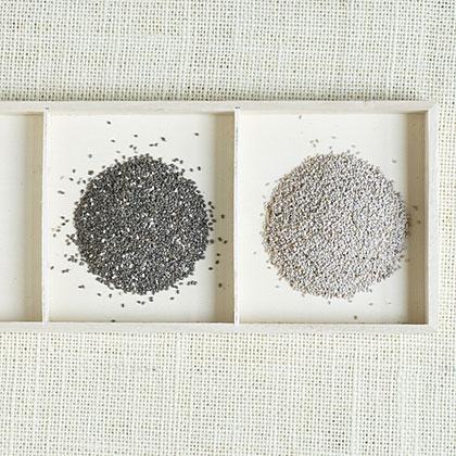 chia-seeds-ate-x.jpg