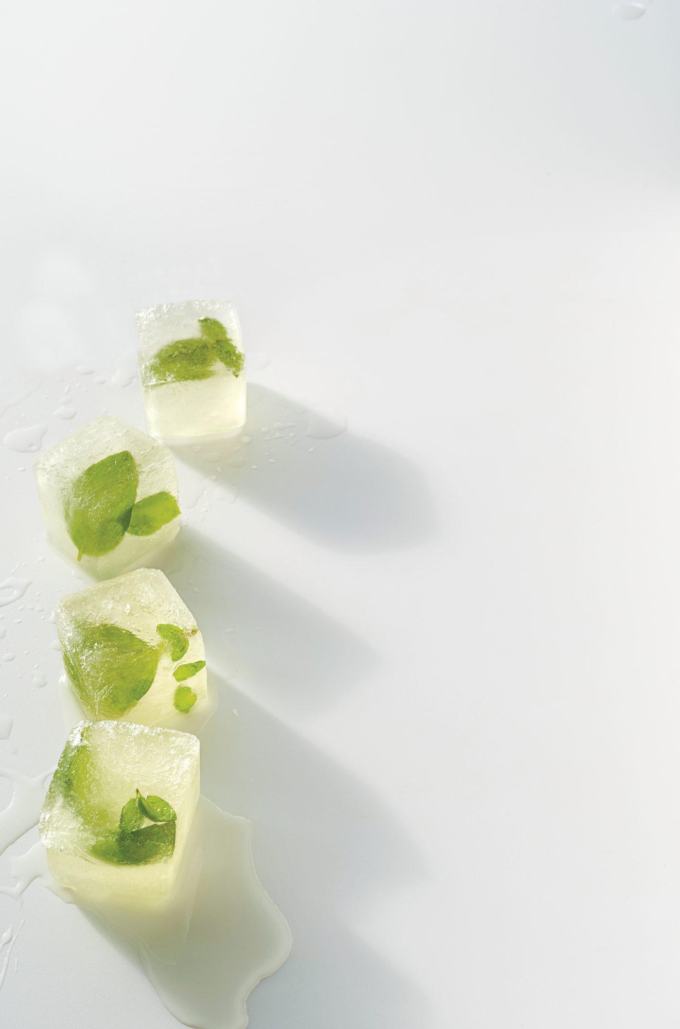 Basil-Vermouth Ice Cubes