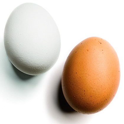 Should I Refrigerate Eggs? And 10 Other Food Storage (Maybe) Myths