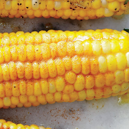 1606p42-corn-on-the-cob-with-lemon-curry-spice-butter.jpg