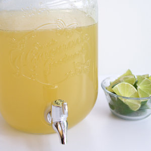 easy-margaritas-for-crowd-mr-11.jpg