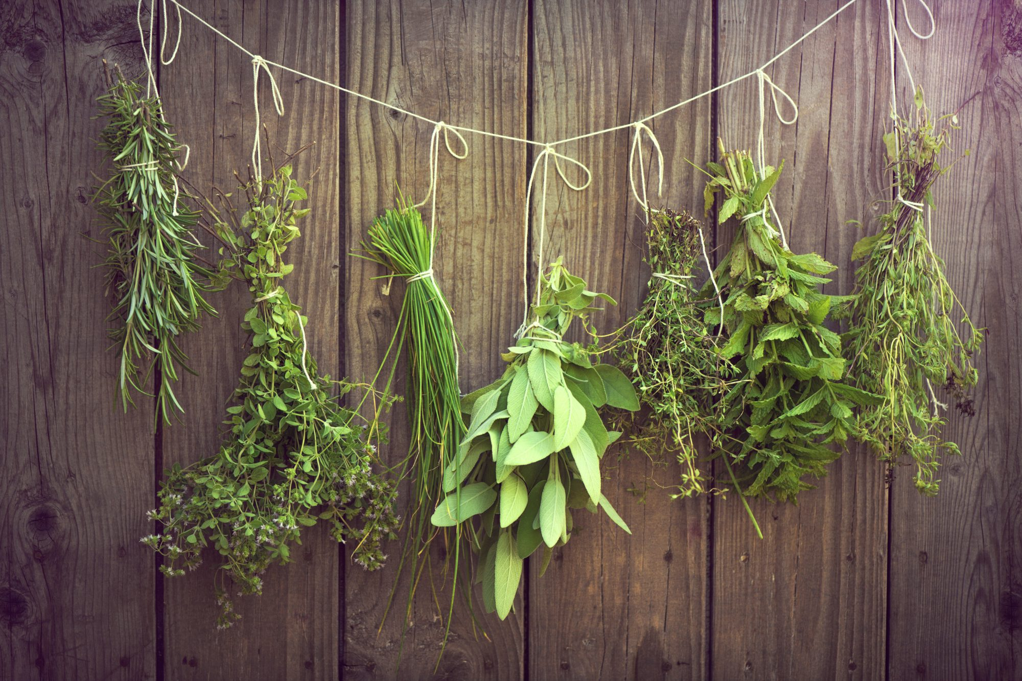 Your Complete Guide to Growing and Cooking with Fresh Herbs Year-Round (No Matter Where You Live)