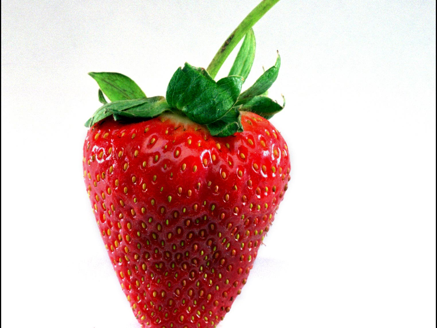 long stem strawberry