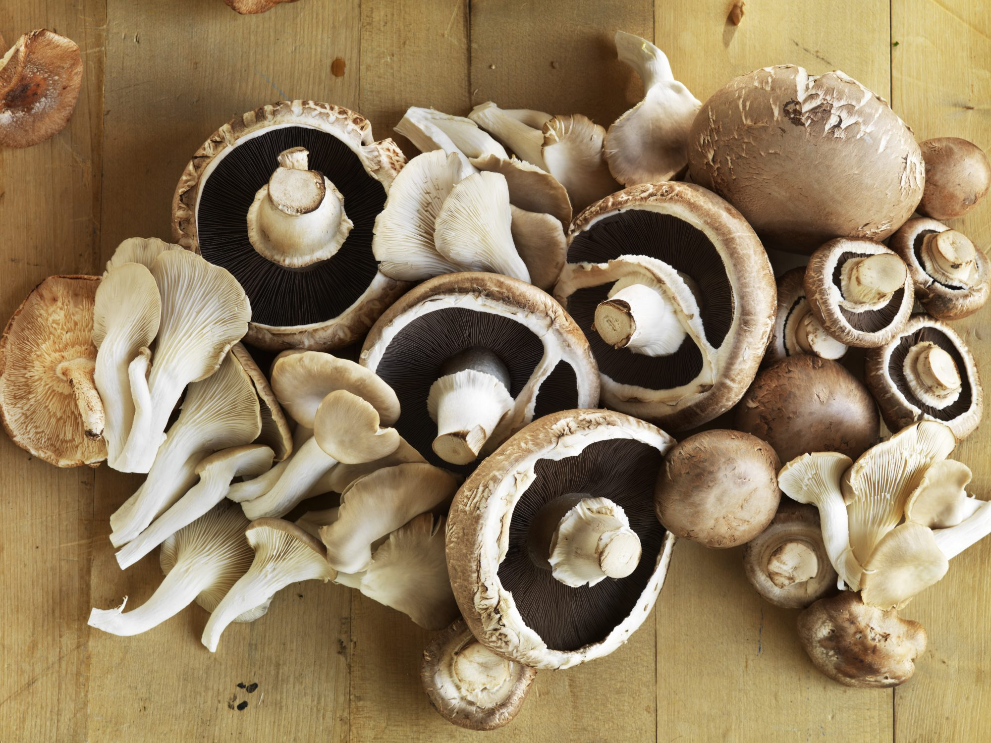 getty-mixed-mushrooms-image