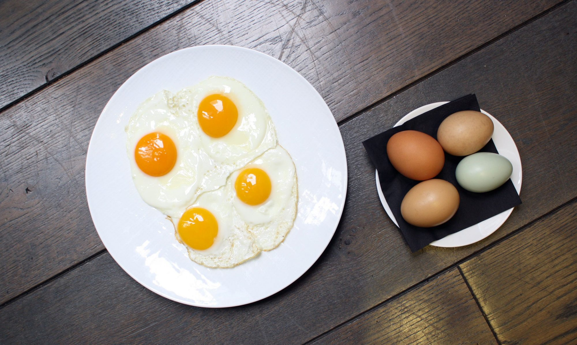 EC: Do Different Color Chicken Eggs Taste Different?