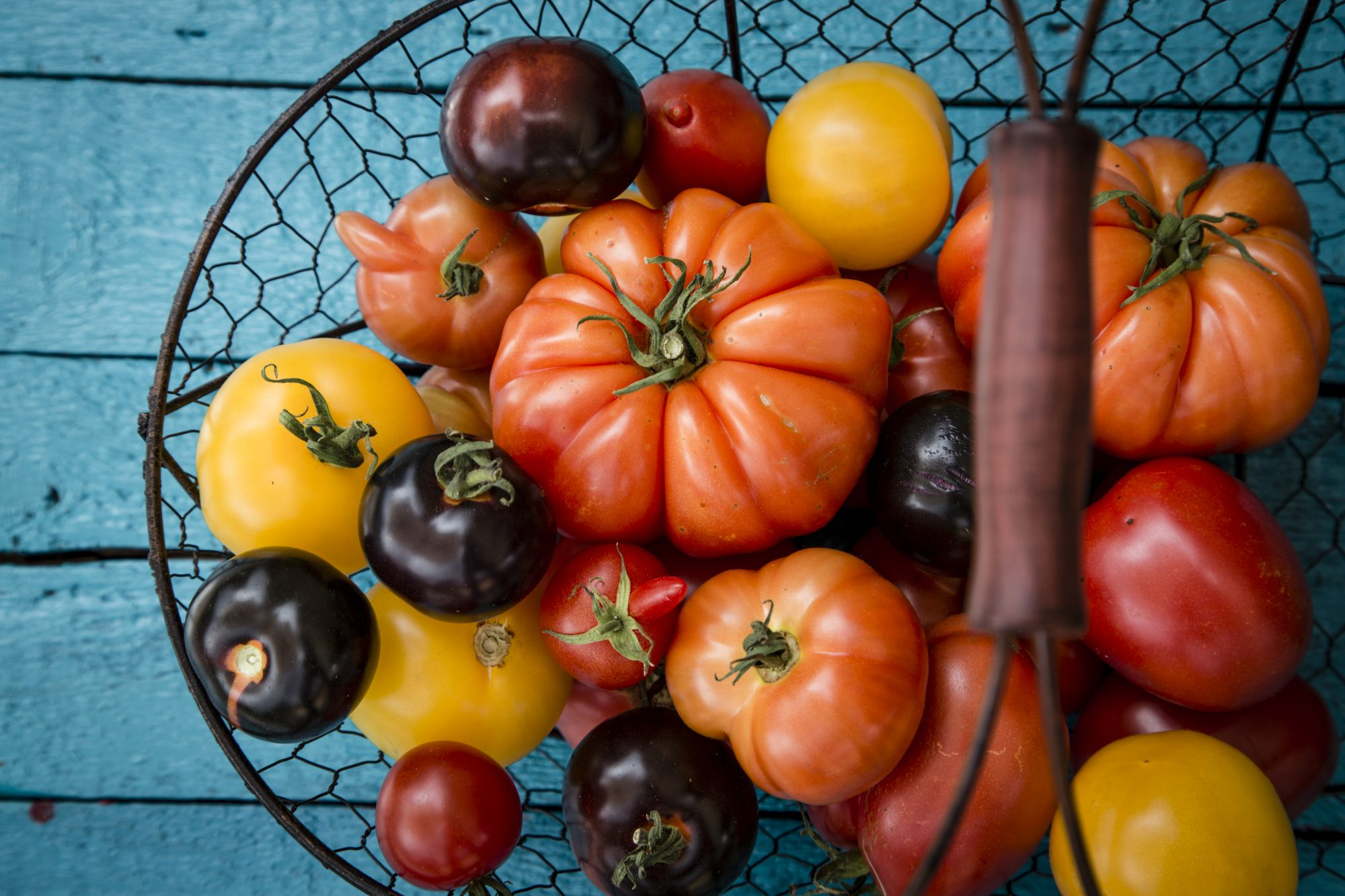 getty-summer-tomatoes-image