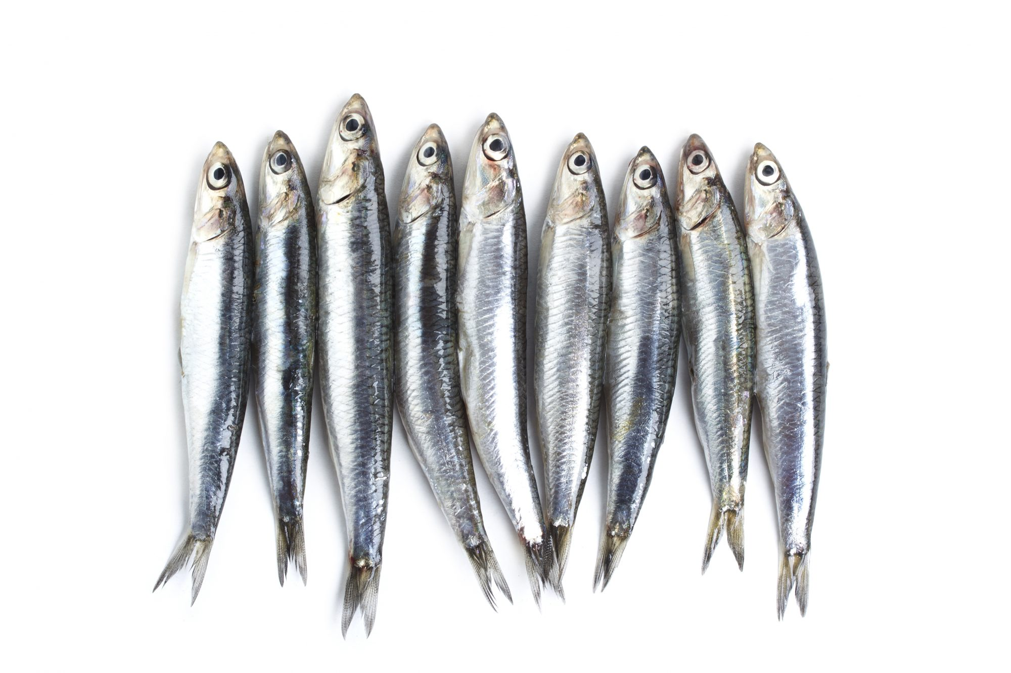 Should You Buy Canned Or Jarred Anchovies A Chef S Advice Myrecipes
