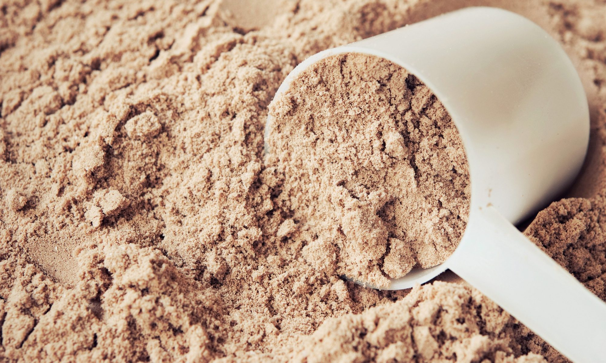 What's Actually in Protein Powder?