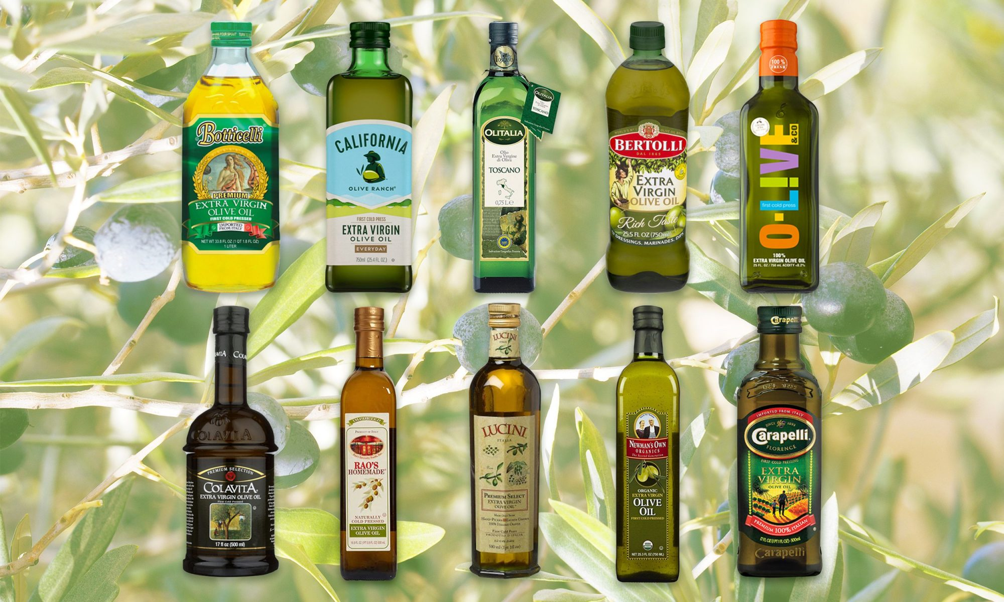 Olive Oil Test Kitchen