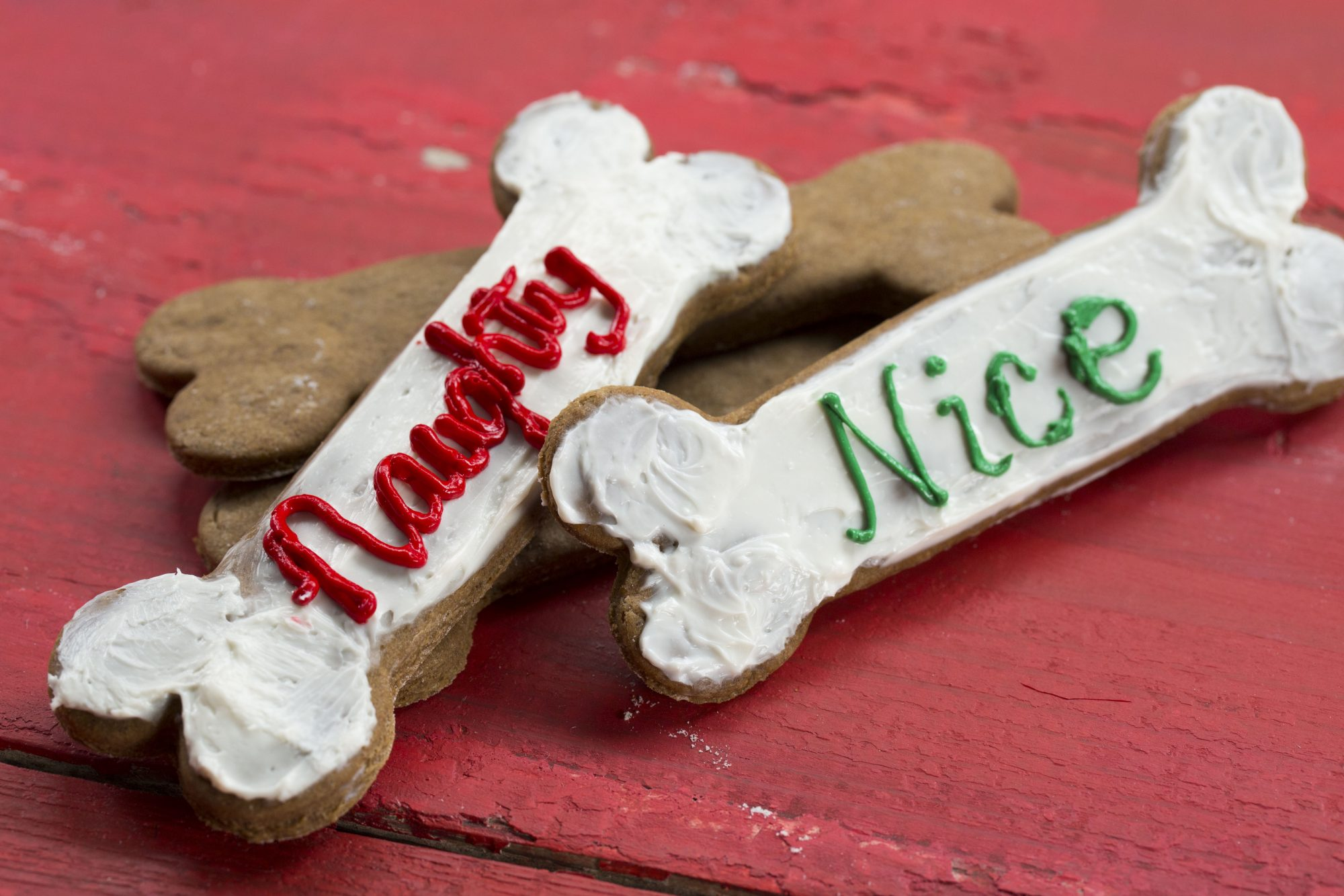 Gingerbread Dog Cookies image