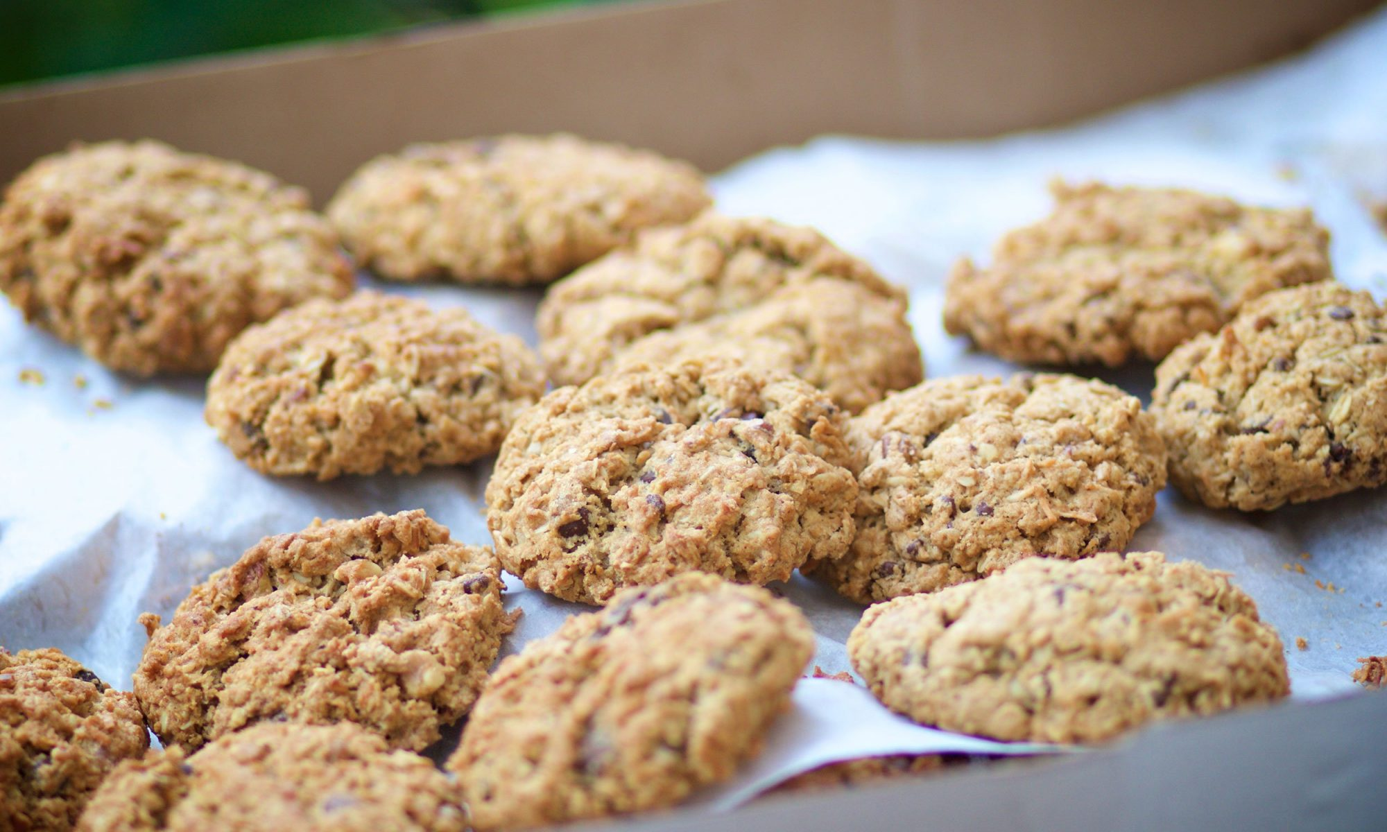 leftover oatmeal cookies