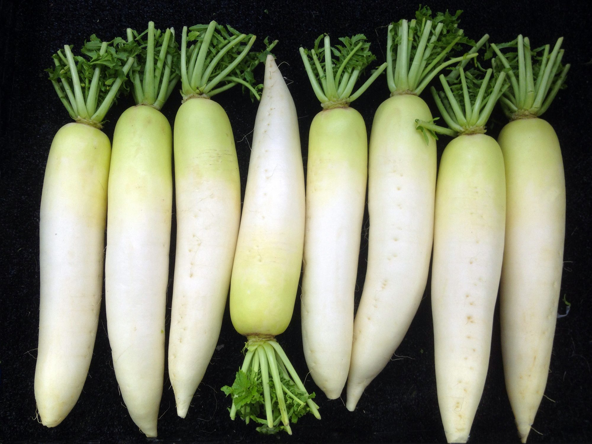 Why You Should Be Cooking (Yes, <i>Cooking</i>) Daikon Radishes