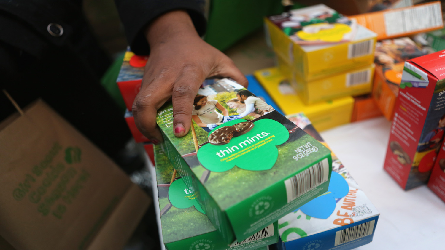 A Girl Scouts Troop for Homeless Girls Is Holding a Cookie Sale