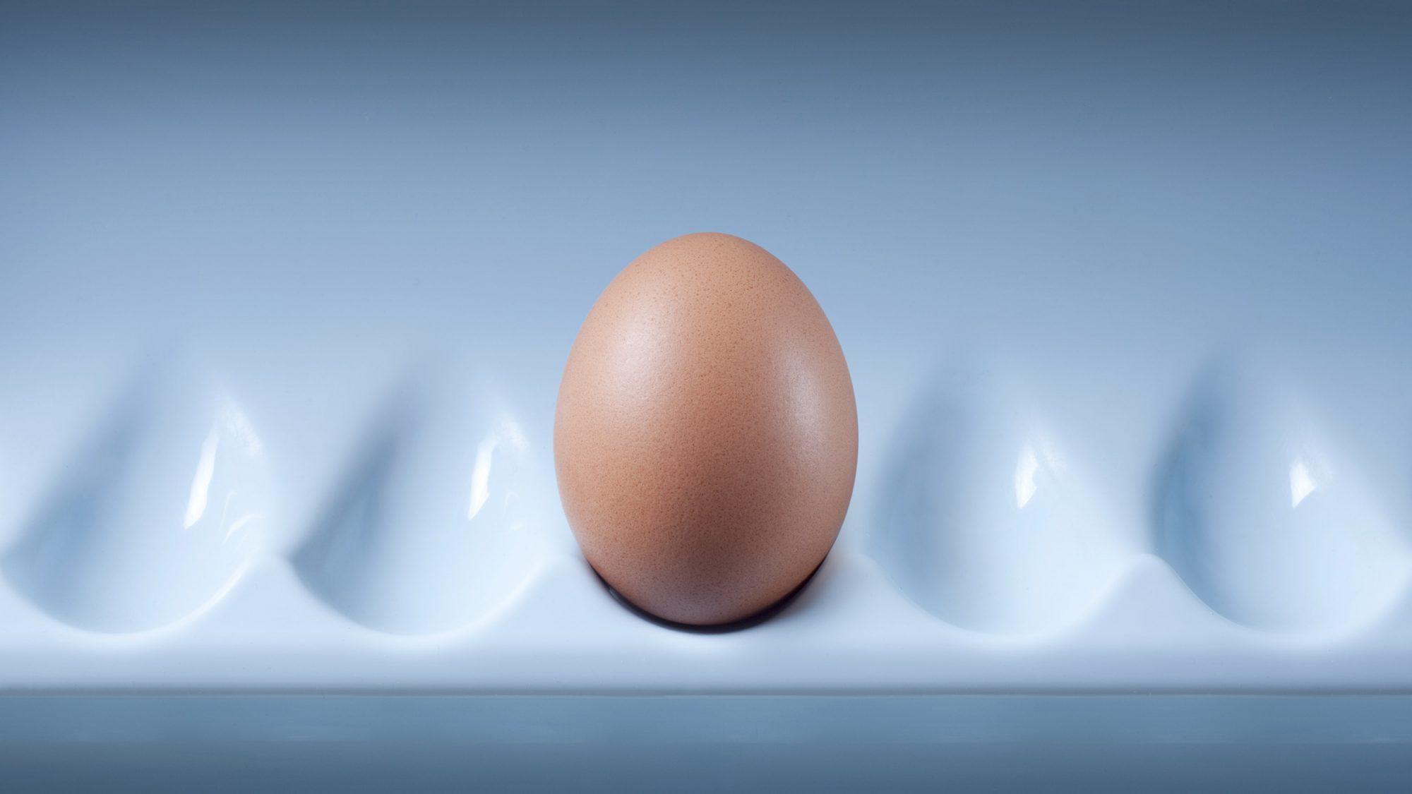 egg in refrigerator door