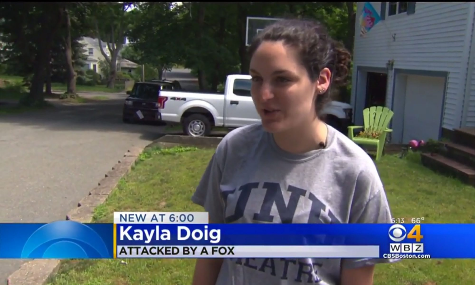 EC: Boston Woman Uses K-Cups and Frozen Waffles in Fight Against Fox