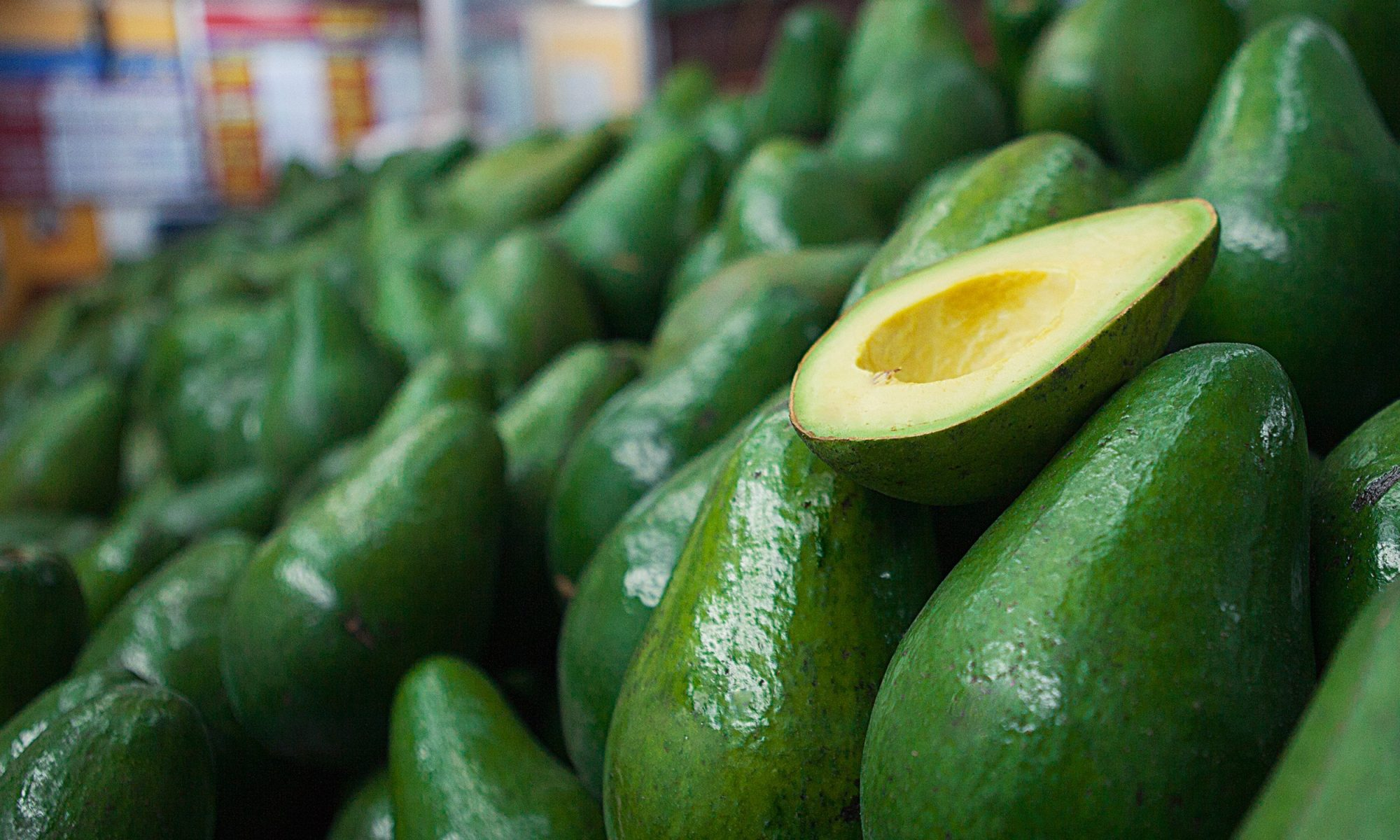 colombian avocados