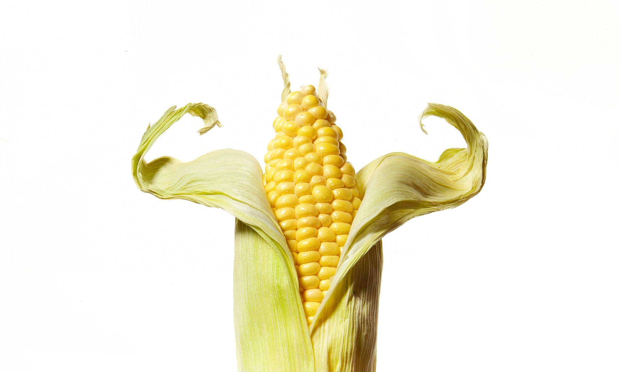 corn cob flexing muscles