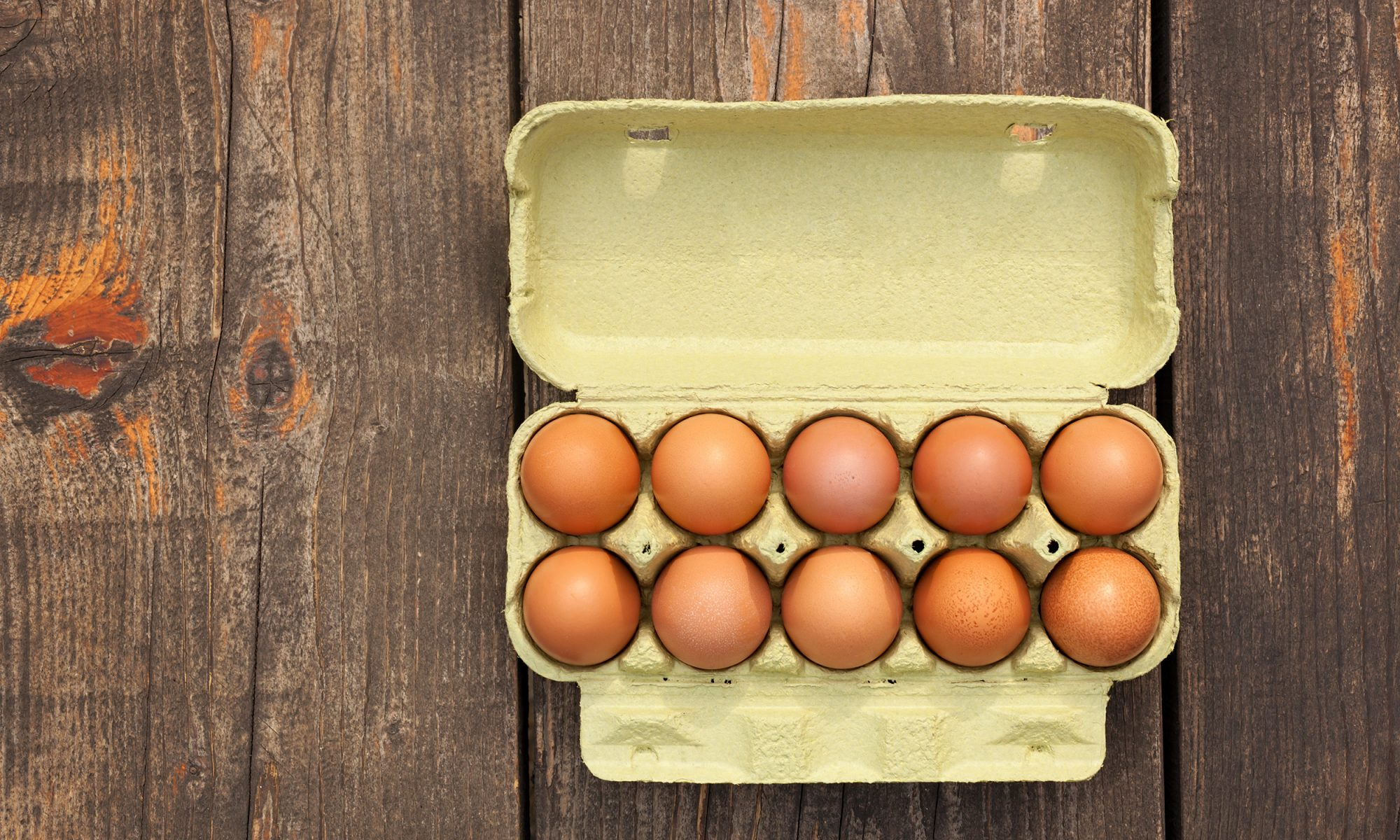 "Trump's USDA Wants to Make ""Organic"" Eggs Less Organic"
