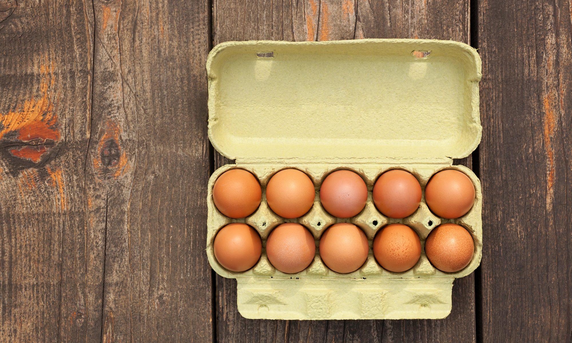 "EC: Trump's USDA Wants to Make ""Organic"" Eggs Less Organic"