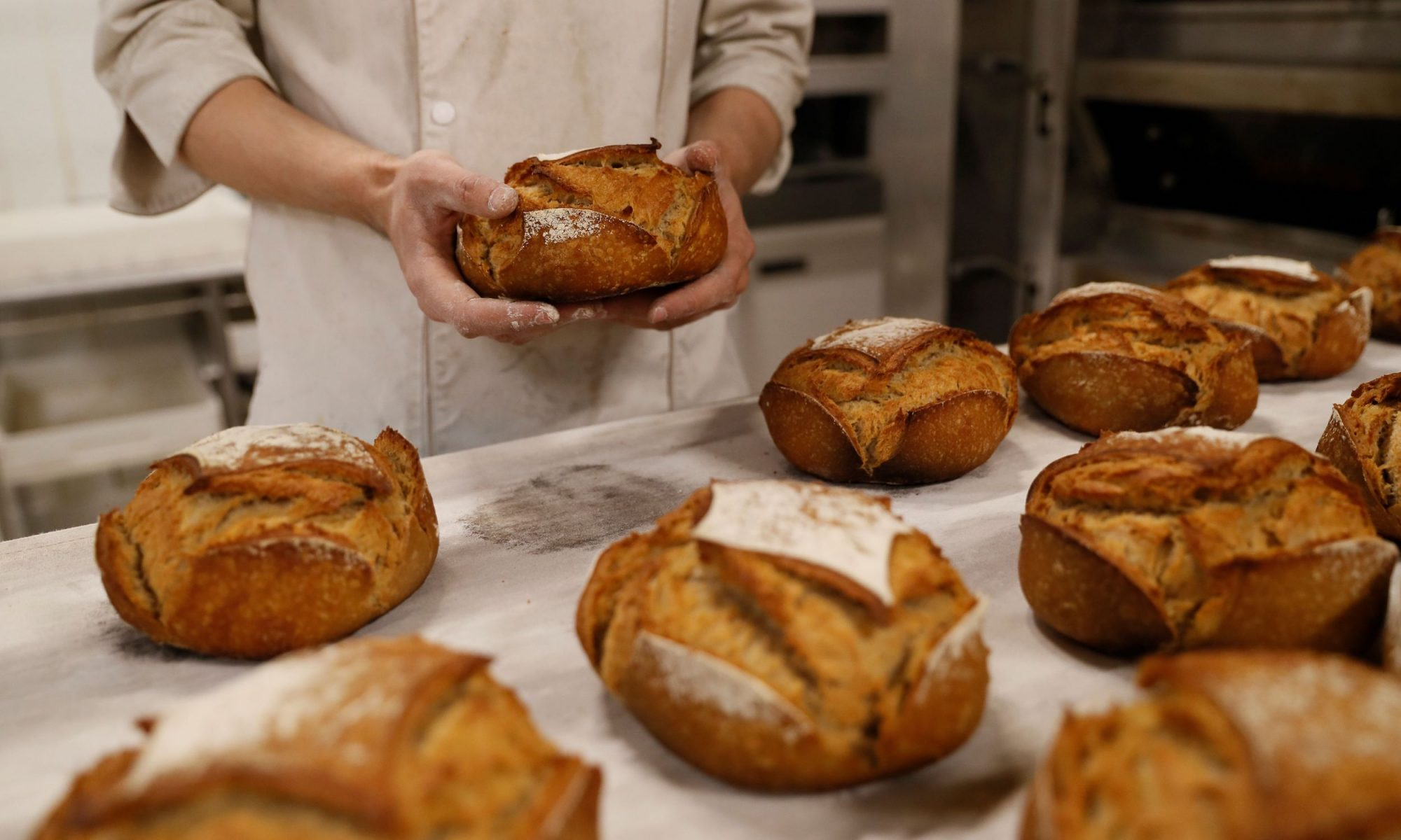 french commercial bakery