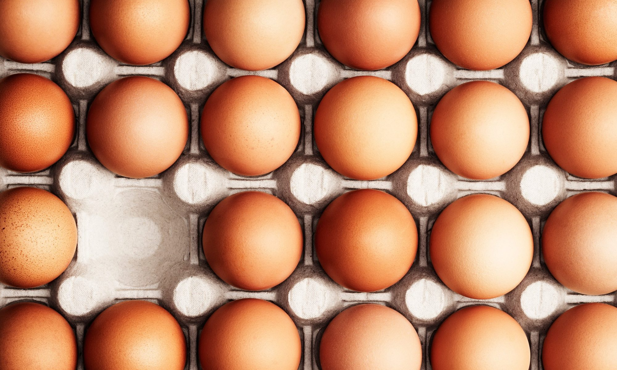 EC: What Do the Labels on Egg Cartons Actually Mean?