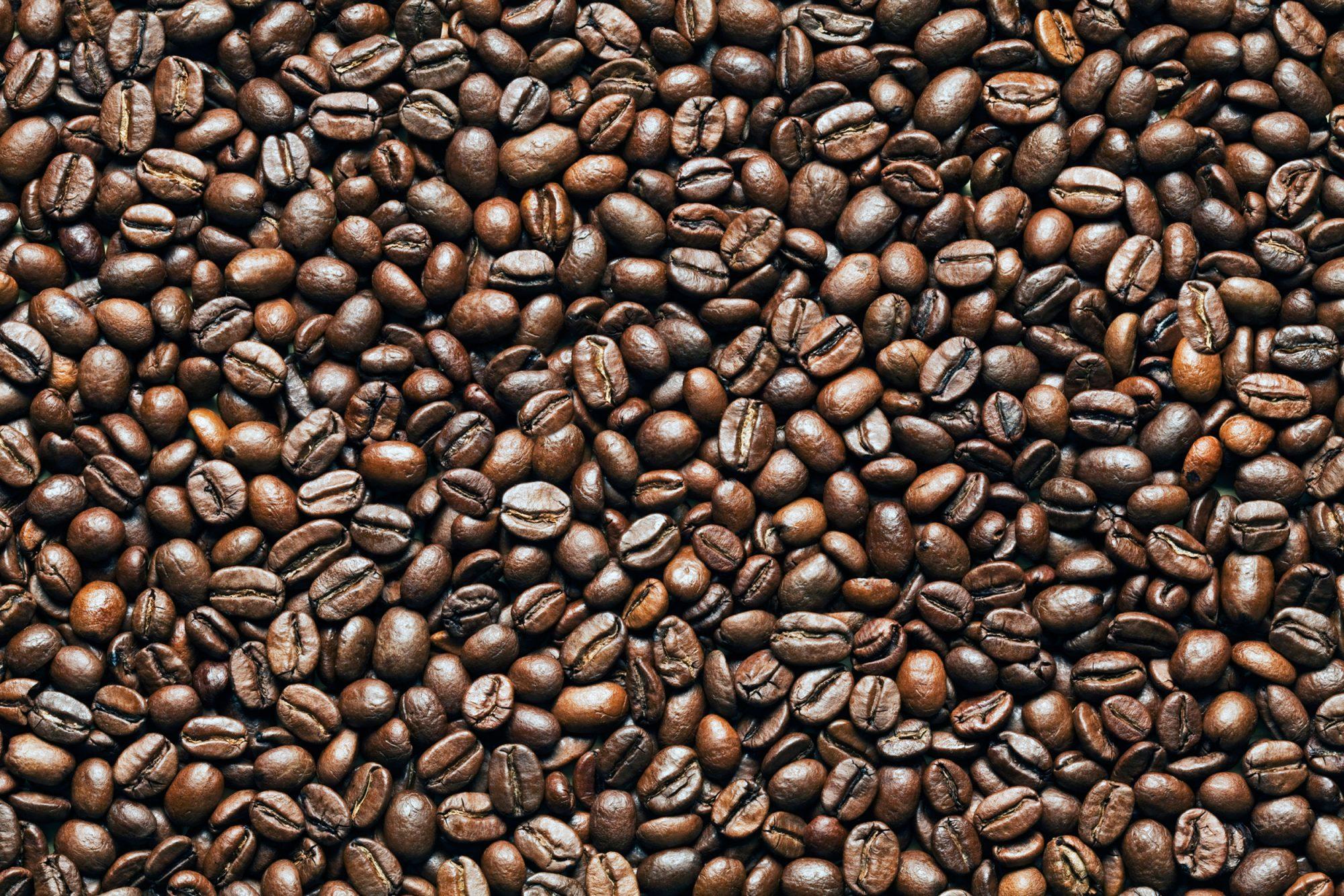 EC: Yemeni Coffee Is Officially Back, But It Isn't Cheap