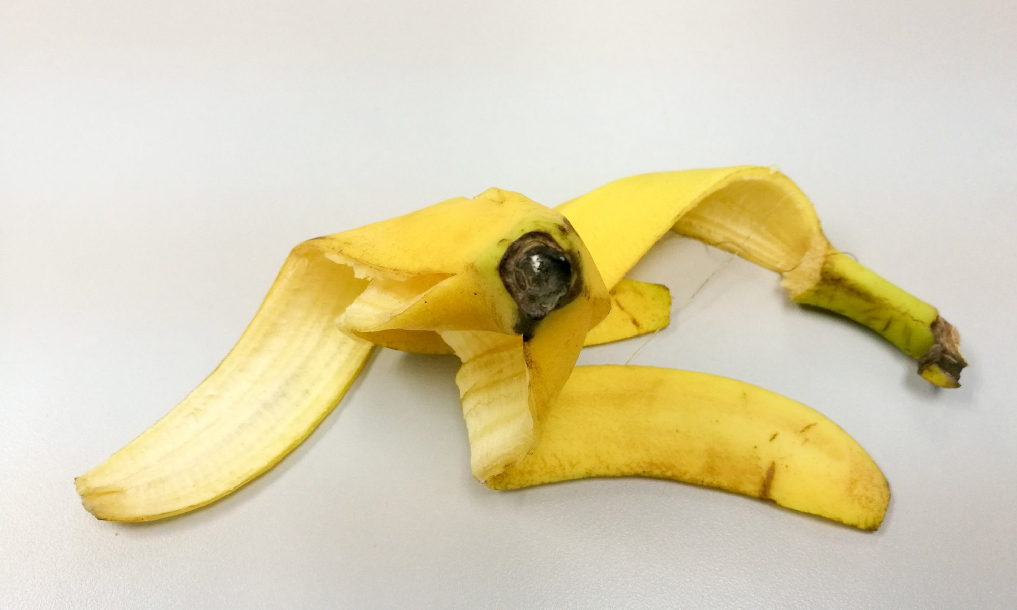 EC: This Artist Uses Banana Peels as a Canvas, and It's Totally Bananas