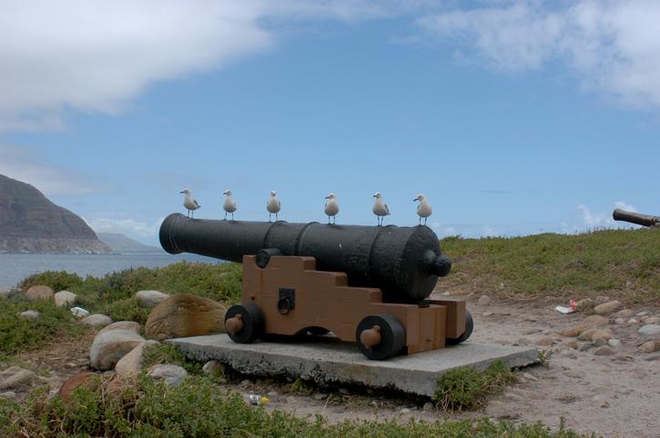 EC: Bird Cannons Annoy Napa Neighbors