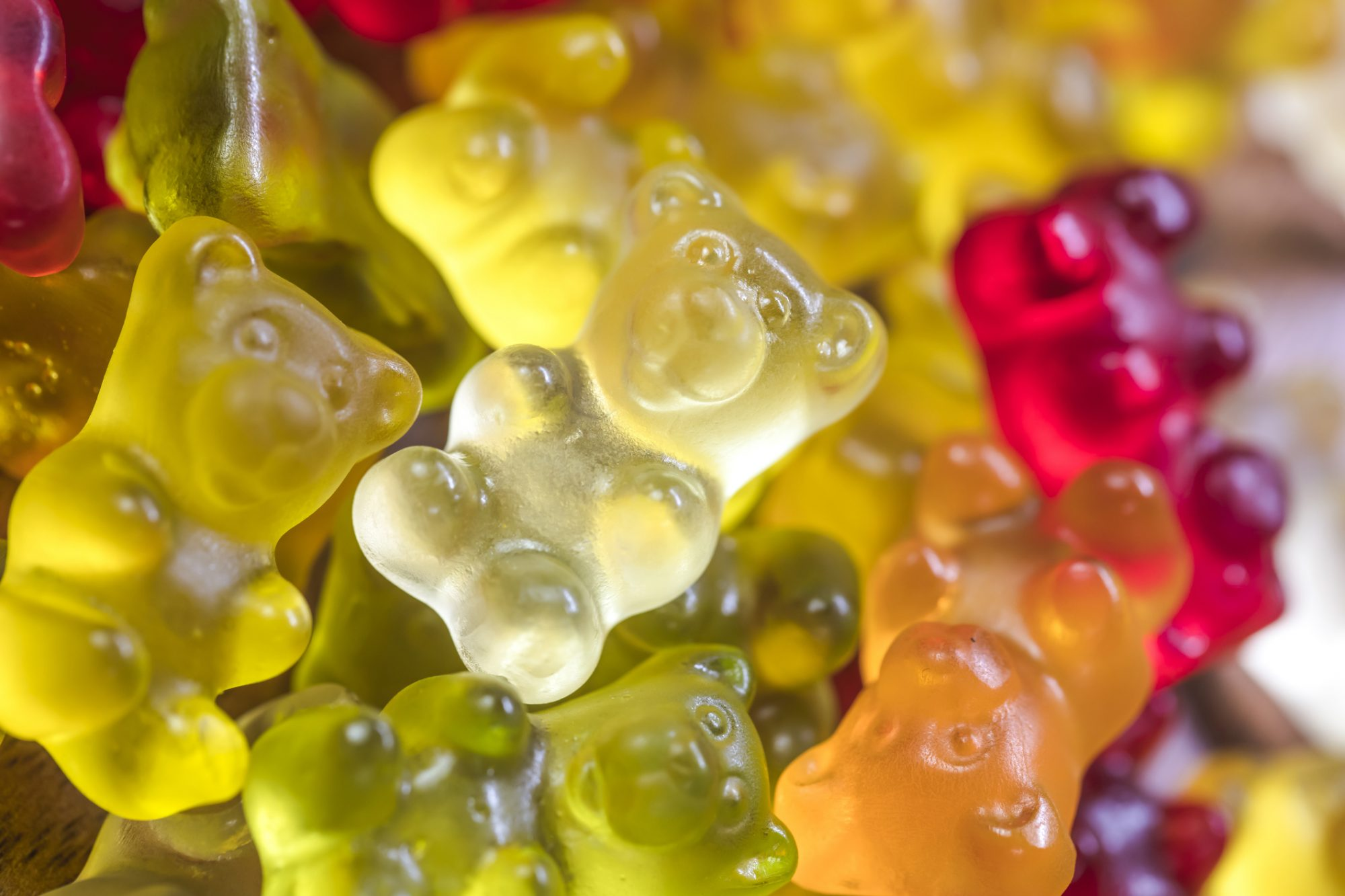 Close-up of gummy bears Candies