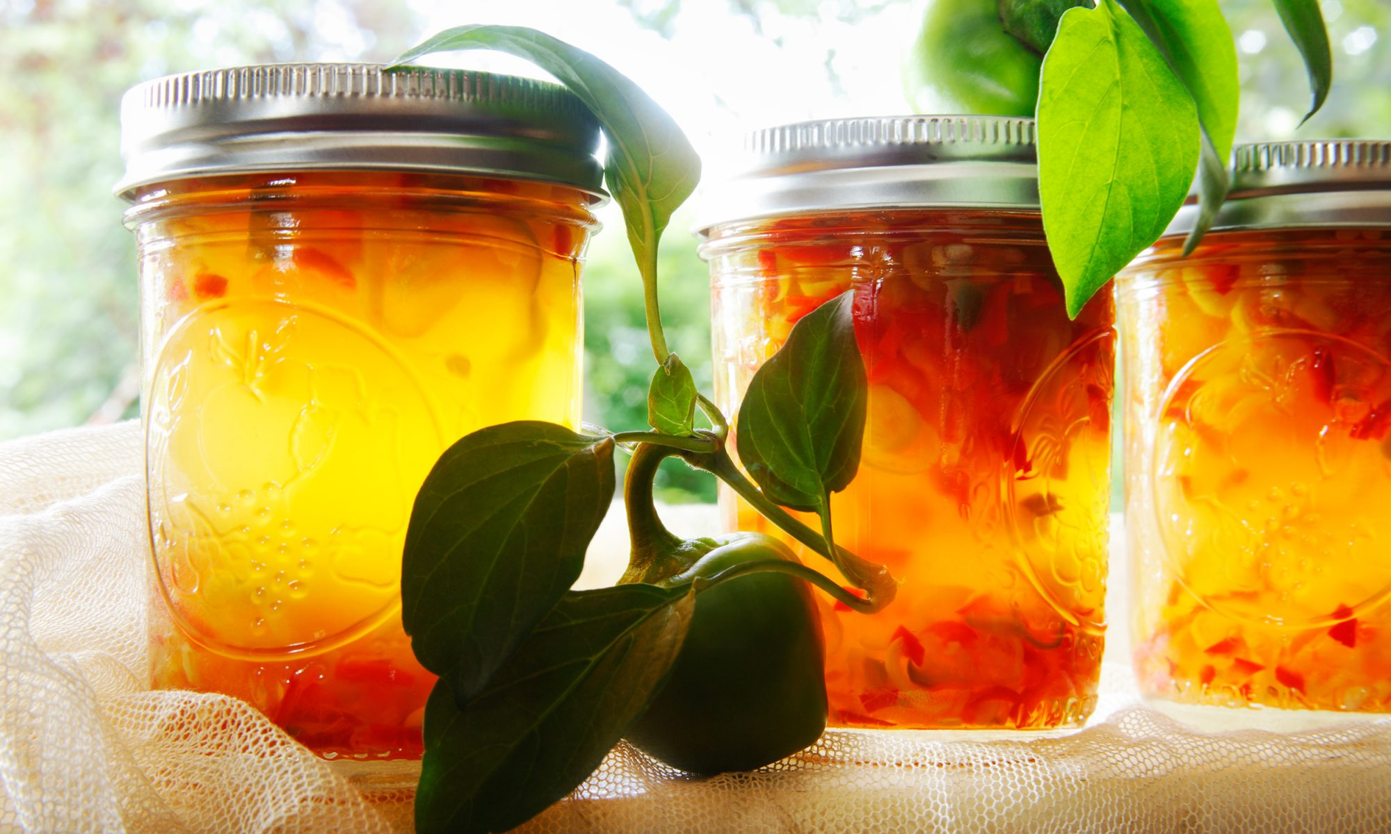 EC: Eat More Hot Pepper Jelly in the Morning