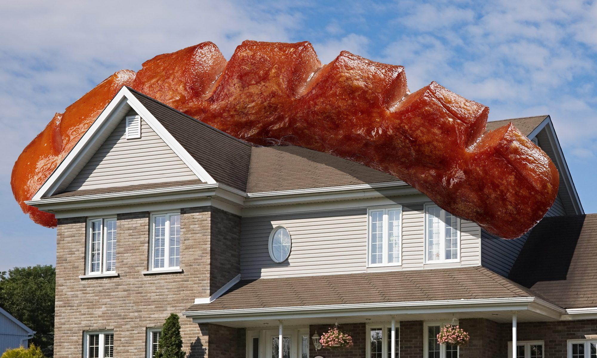 EC: 15 Pounds of Italian Sausage Crashes onto Florida Family's Roof