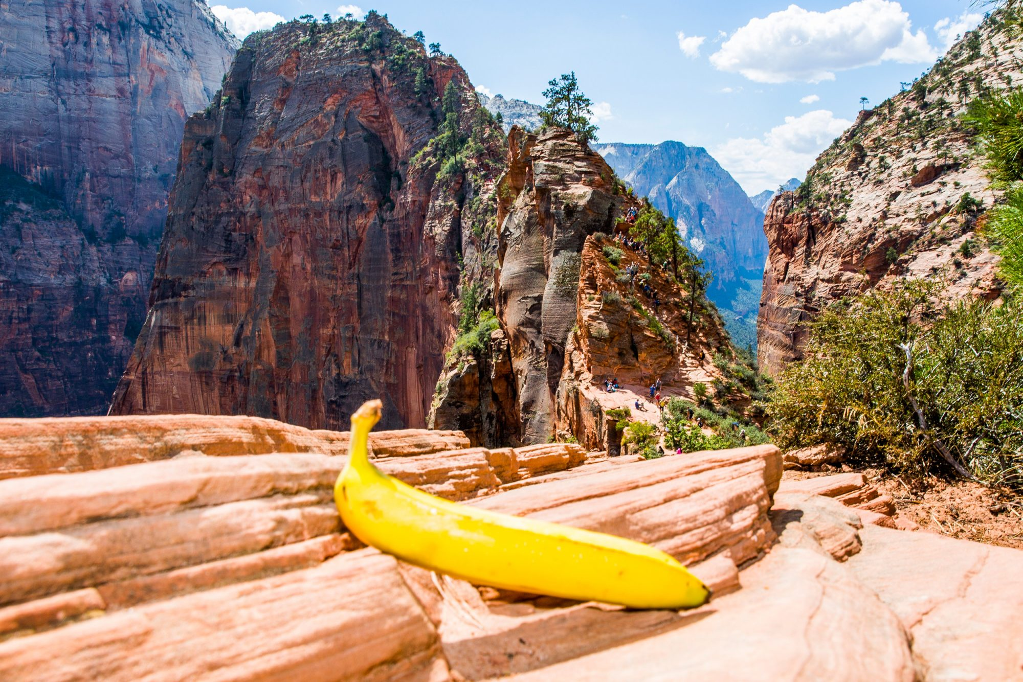 national parks banana