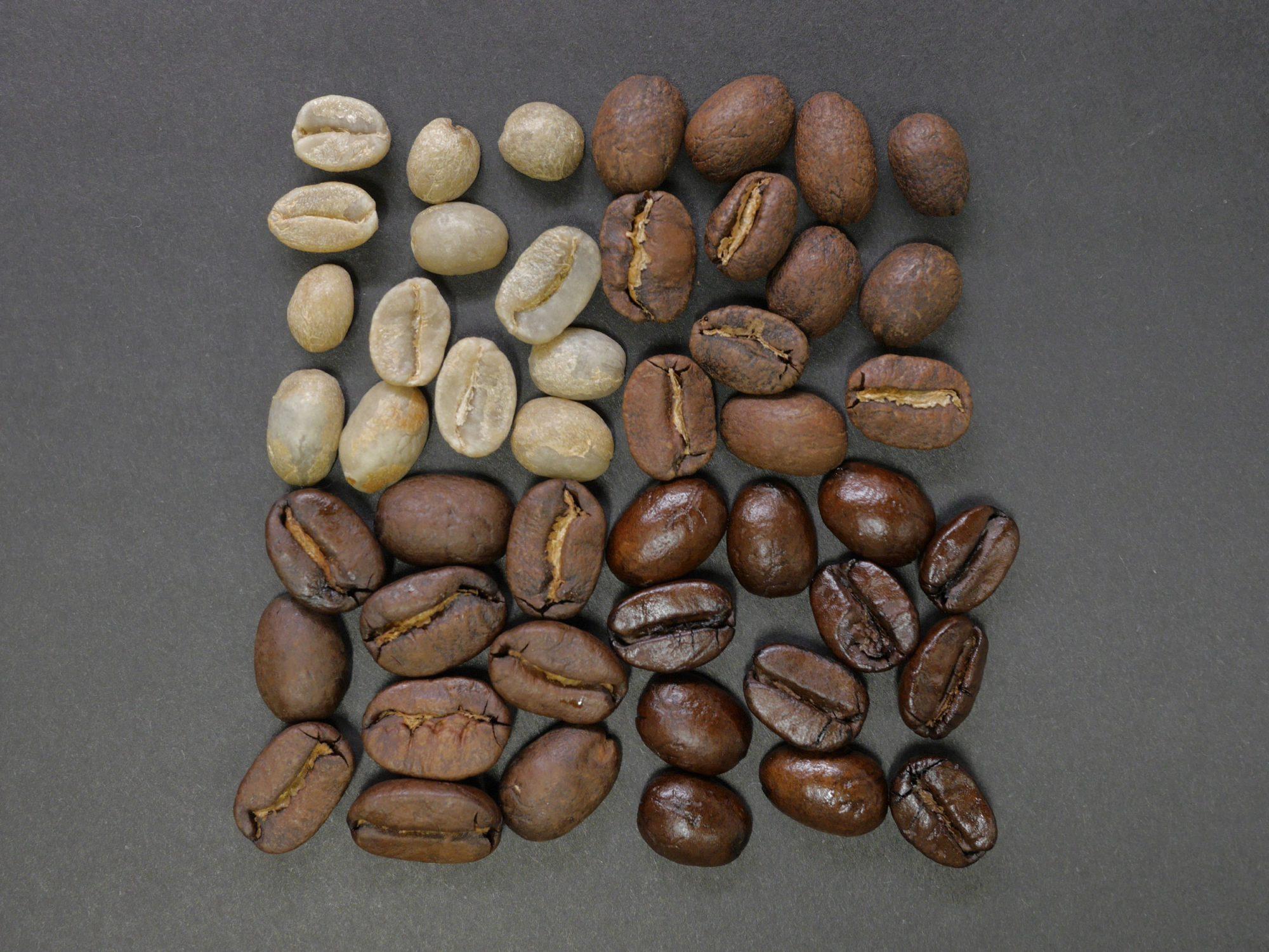 EC: Does Light or Dark Roast Coffee Have More Caffeine?