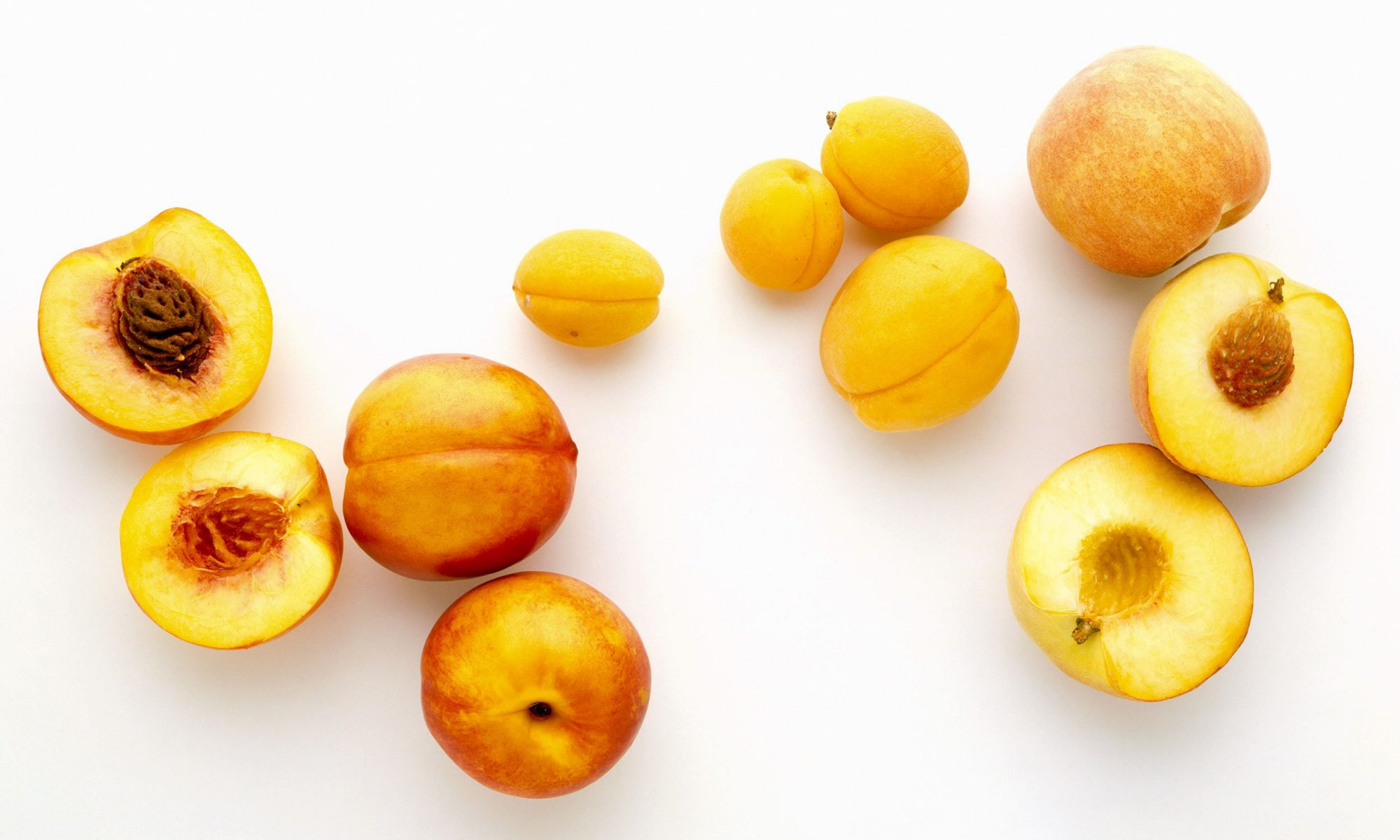 EC: What's the Difference Between a Peach and an Apricot?