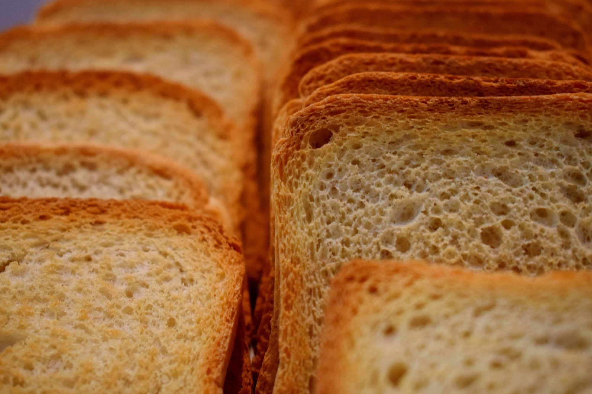 EC: Eat More Toast, Live More Days