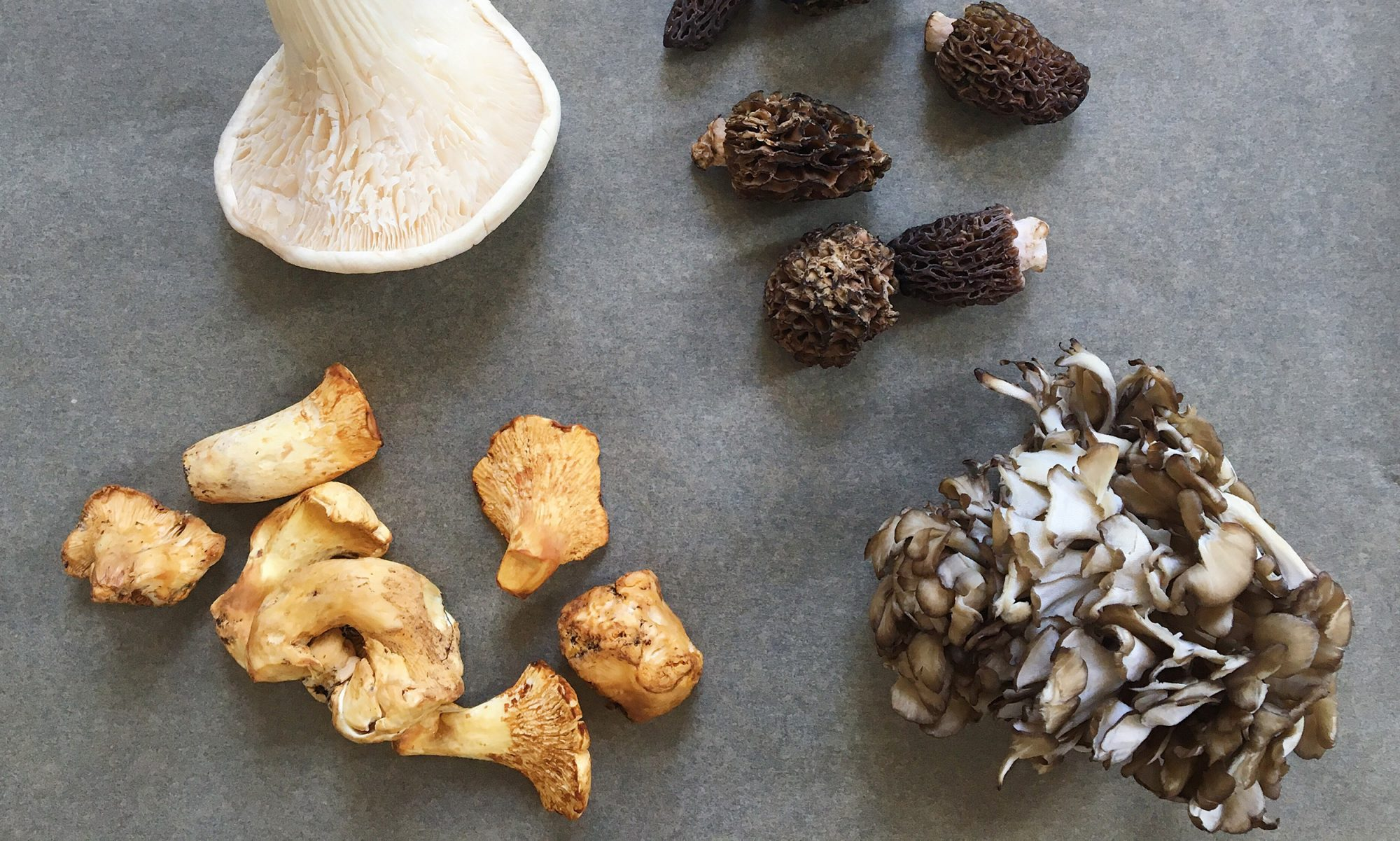 EC: Mushrooms: A Down and Dirty Guide to Buying, Cleaning, Storing, Prepping, and Cooking