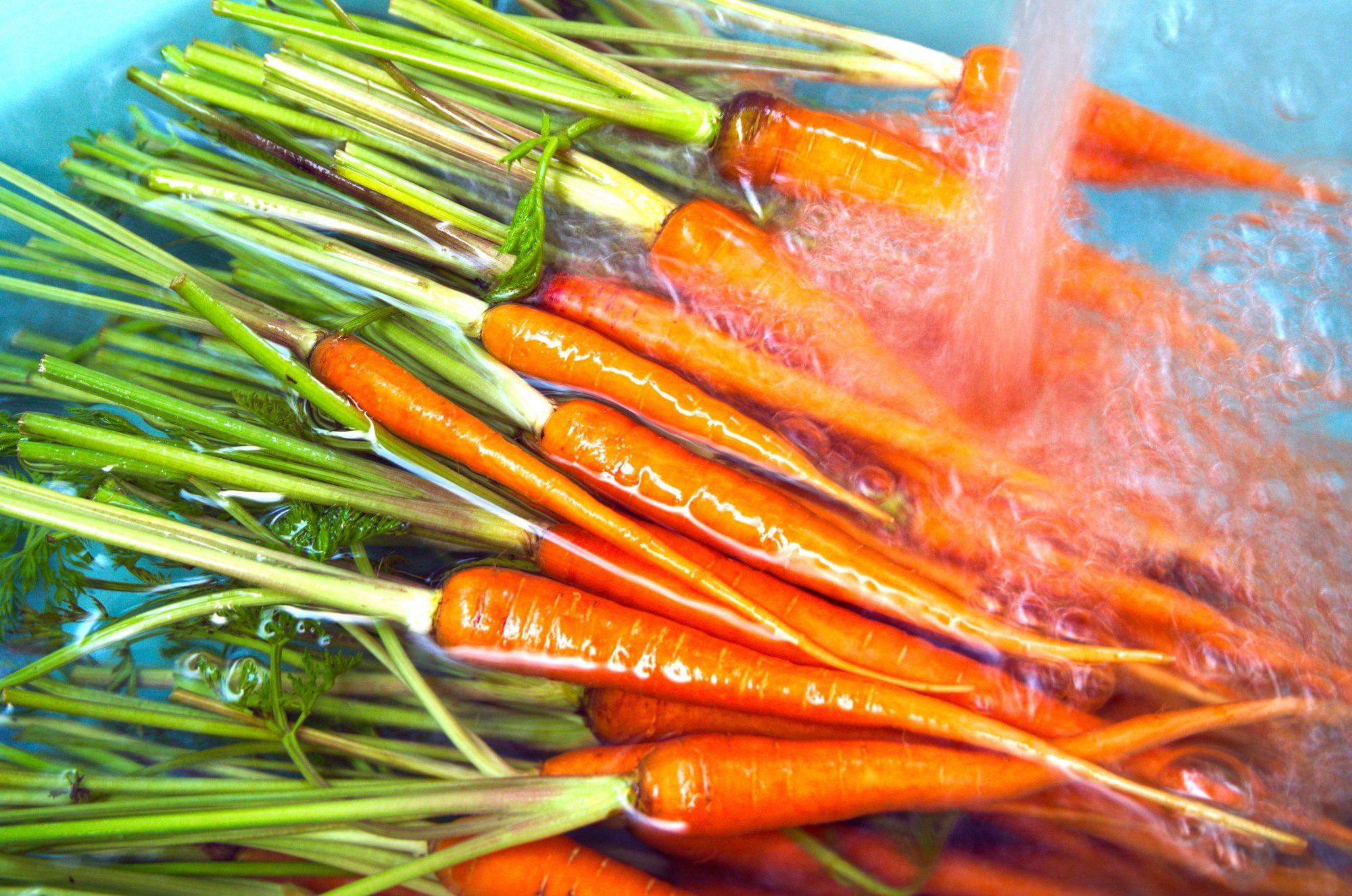 Carrots in Water