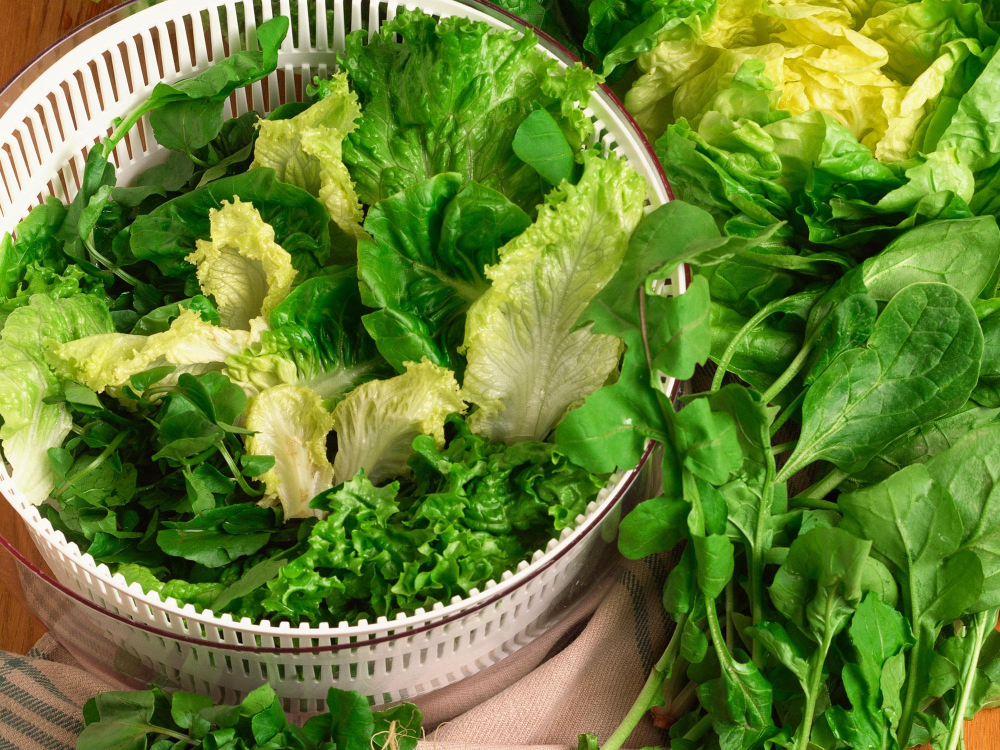 salad-spinner.jpg