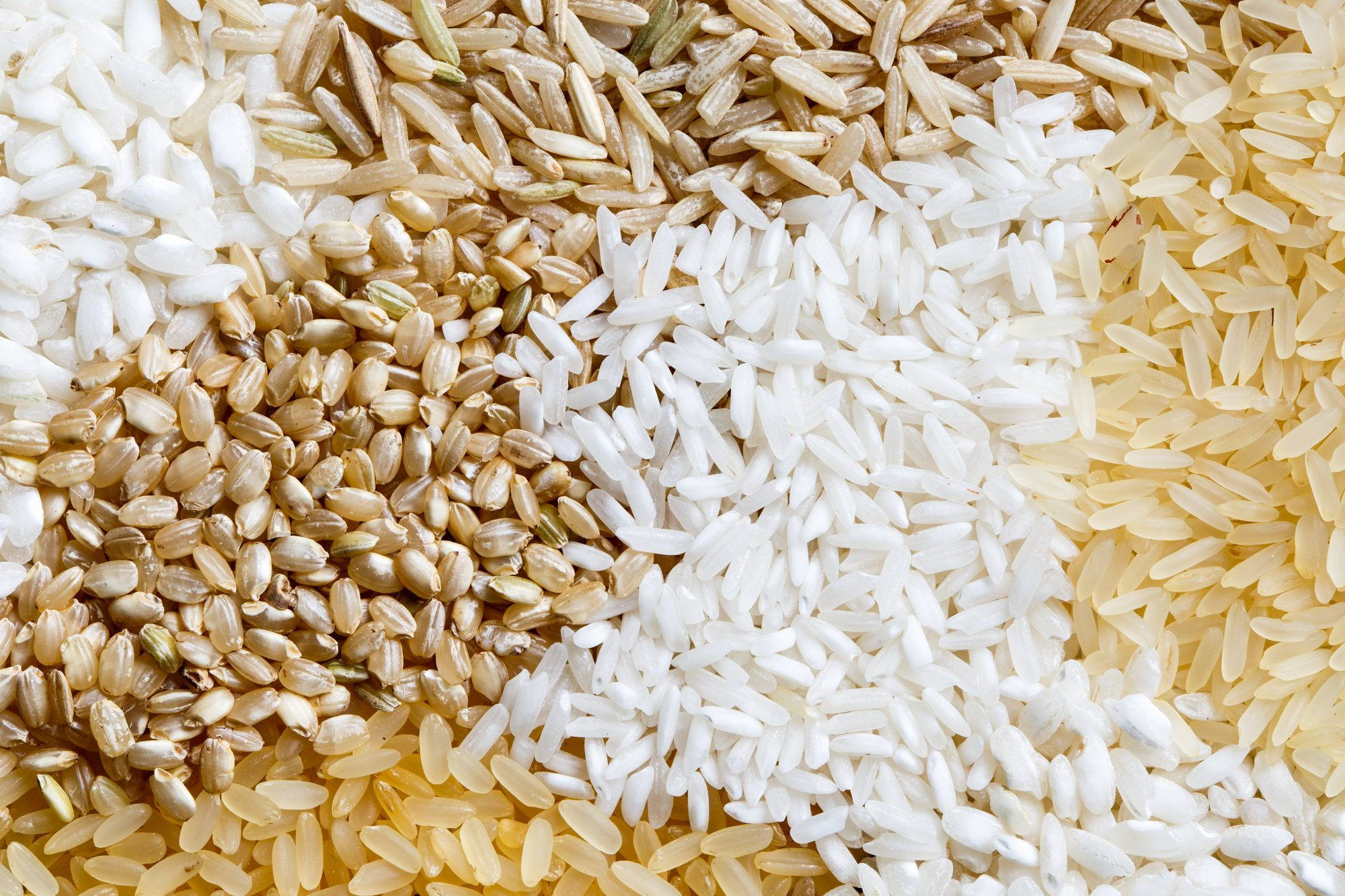 What is the Difference Between Short-, Medium-, and Long-Grain Rice?