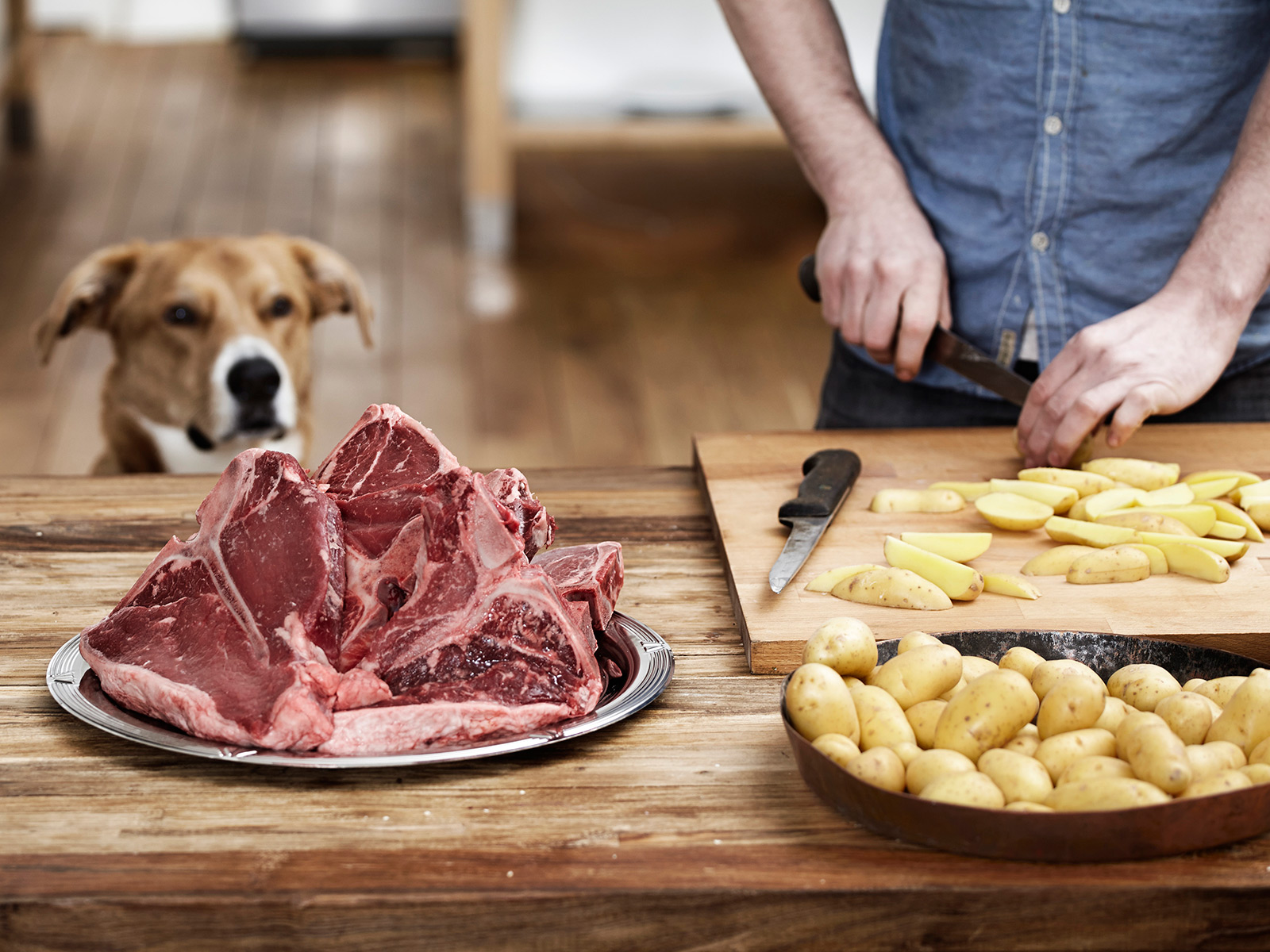 dog-looking-at-meat.jpg