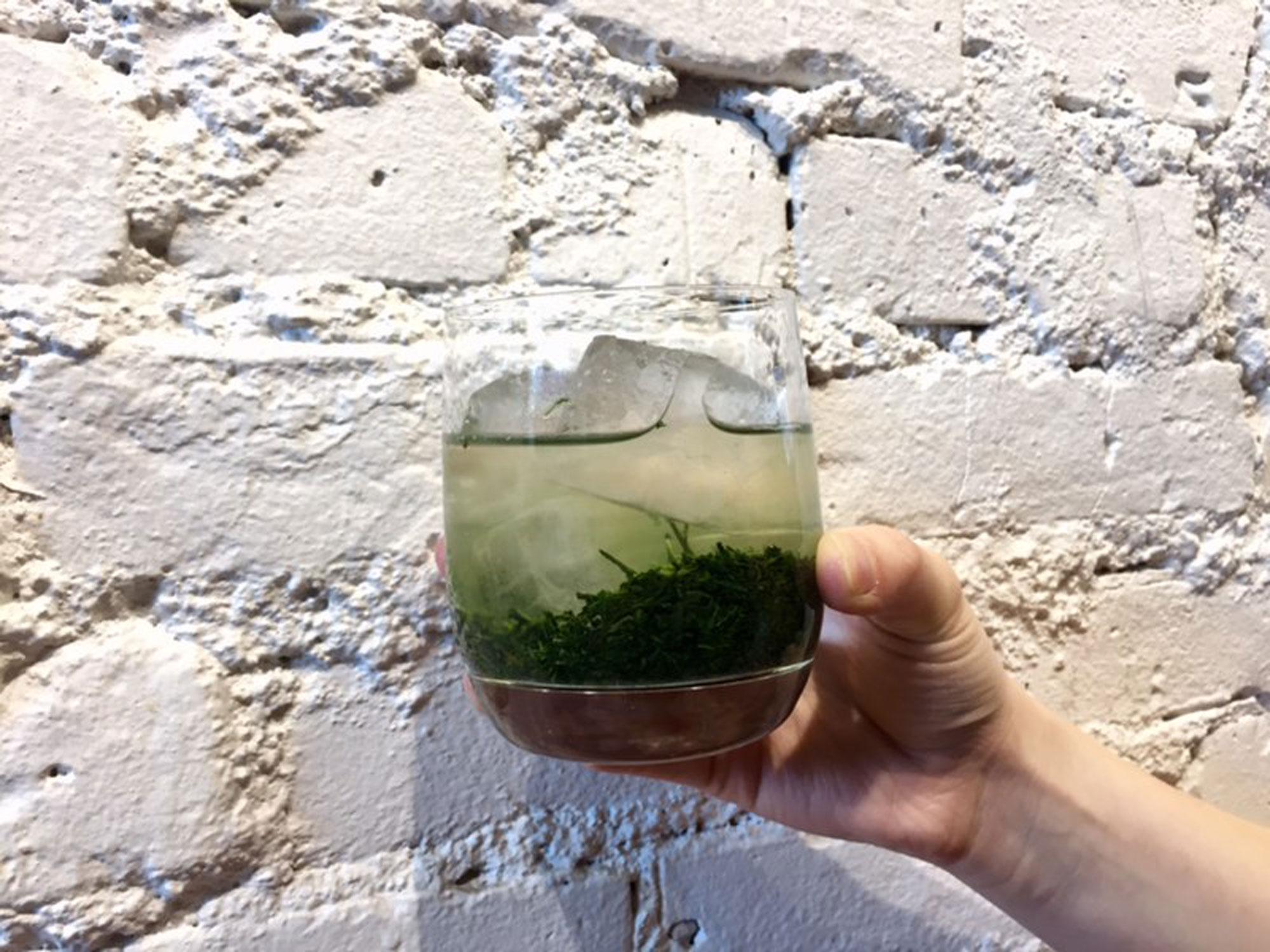 kouridashi-iced-green-tea.jpg
